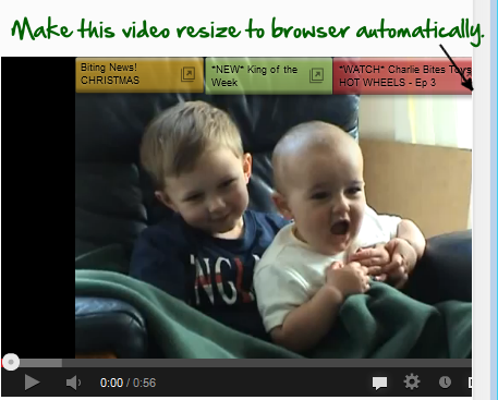 Auto resize youtube video for responsive site