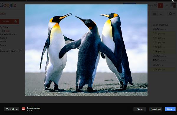 Google Drive preview single file